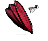 String Care Badminton